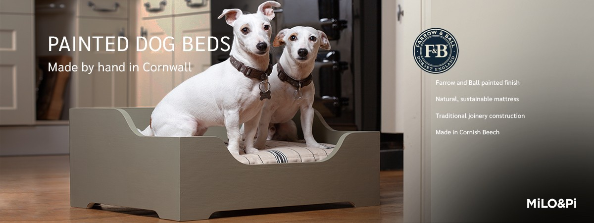 Painted Dog Beds